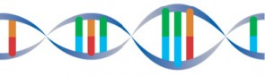 DNA_before